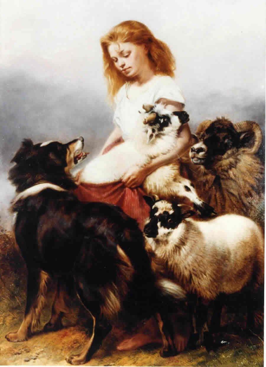 The Herd Lassie